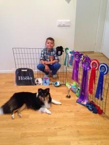 Axel stolt efter en 2.a plats handling Kalmar inofficiella hundutställning. Visar Novas rosetter från våra första utställningar januari 2015 till juni 2015!